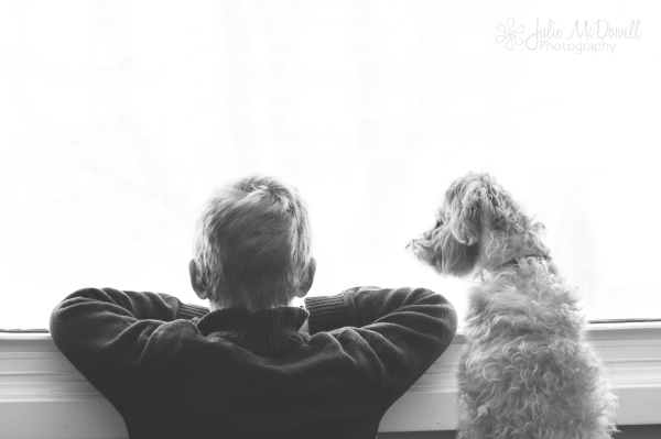 boy and dog web_1